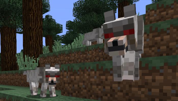 敵対しているオオカミ
