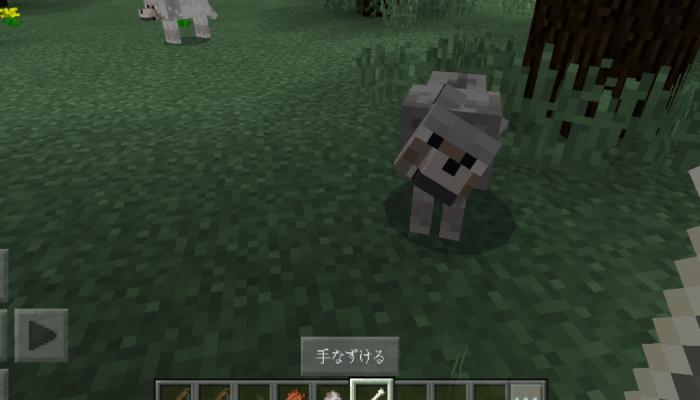 オオカミを手懐ける(PE)