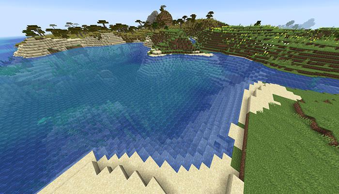 海岸(浜辺)バイオーム