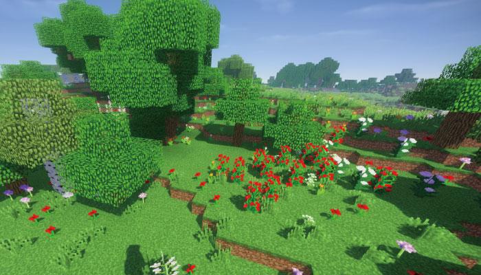 花の森-Flower Forest