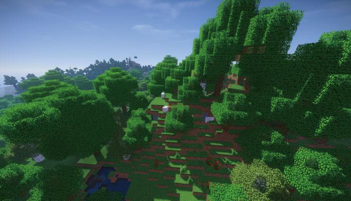 森の丘-ForestHills