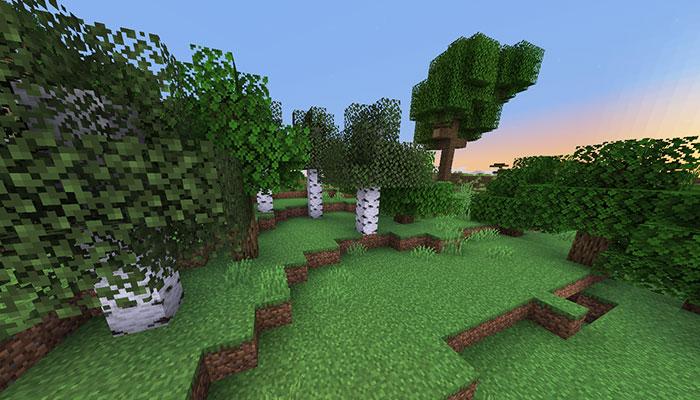 森林バイオーム