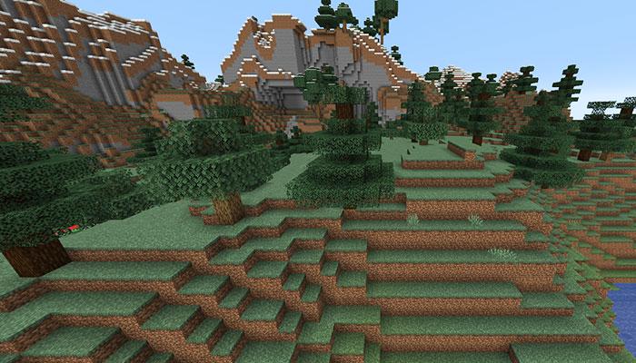 森のある丘バイオーム