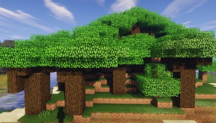屋根に覆われた森 M-Roofed Forest M