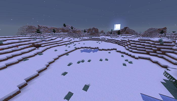 雪のツンドラバイオーム