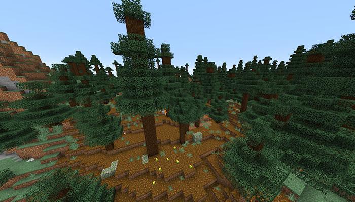 巨大なマツのタイガバイオーム