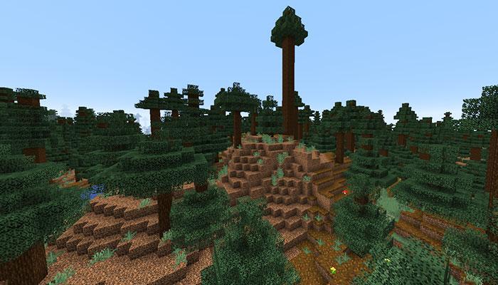 巨大なマツのタイガの丘バイオーム