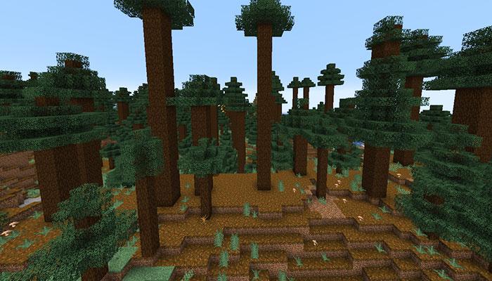 巨大樹のタイガバイオーム