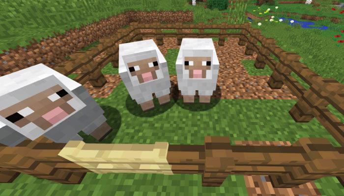 羊小屋への誘導