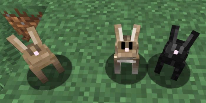 温暖系バイオームのウサギの見た目