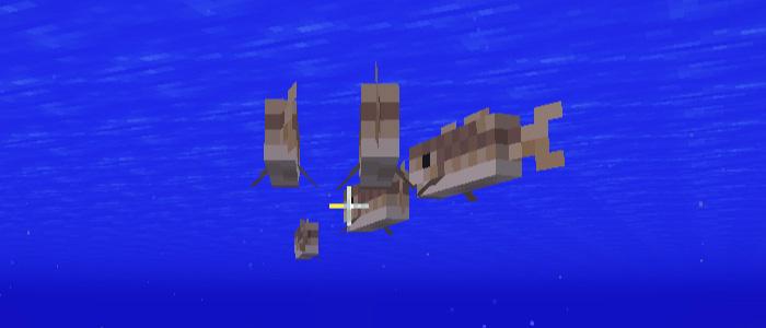 タラの魚群
