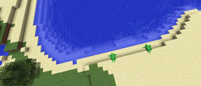カメがスポーンする砂浜