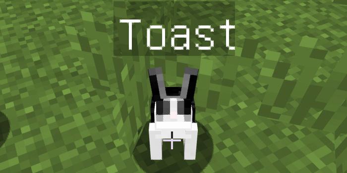 Toastと名付けられたウサギ
