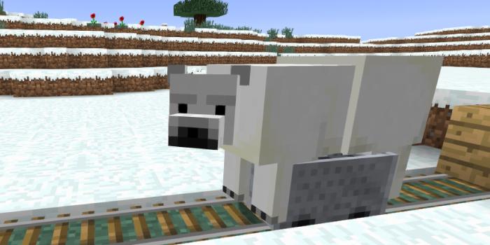 トロッコで輸送されるシロクマ