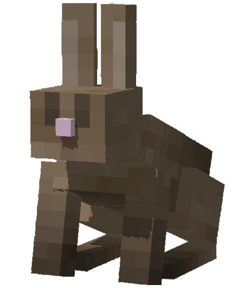 ウサギ(Rabbit)