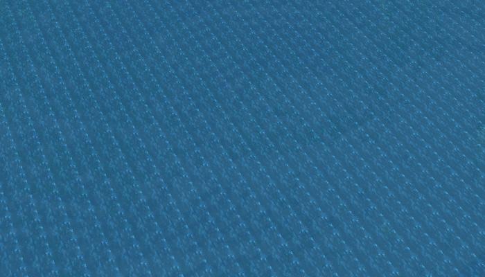 ぬるい海洋バイオーム