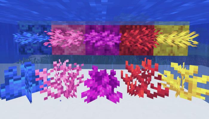 サンゴブロック