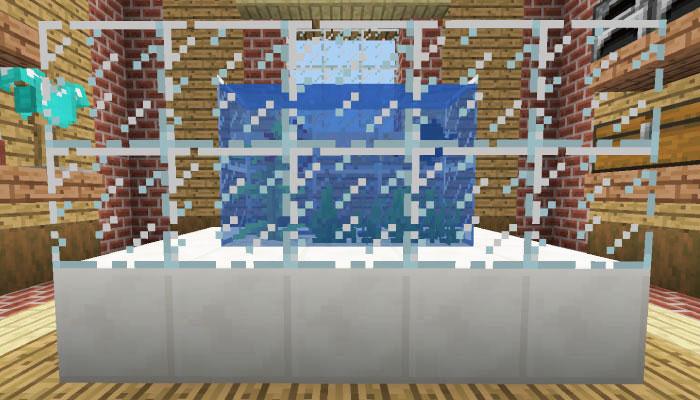 海草の入った水槽