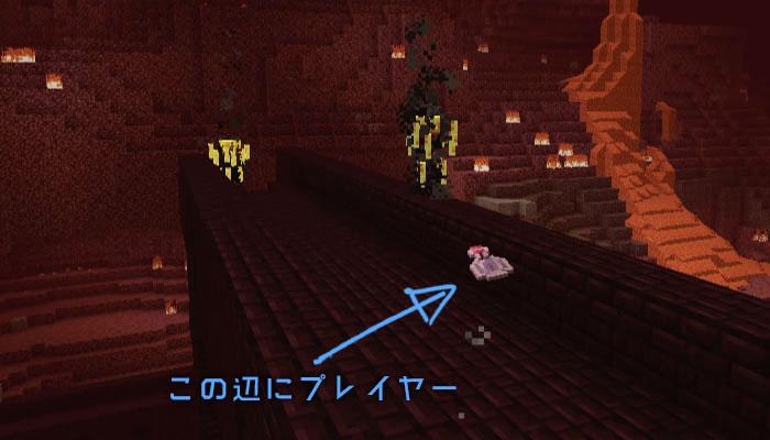 透明のプレイヤーがネザーを探索