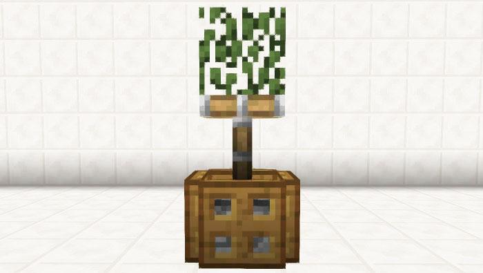 ピストン式観葉植物②