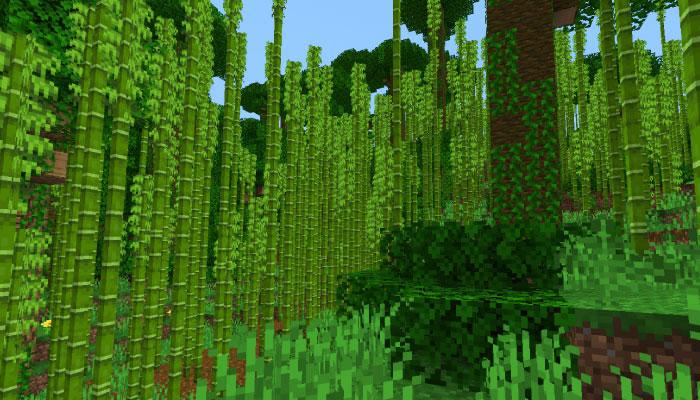 パンダが生息する竹林バイオーム