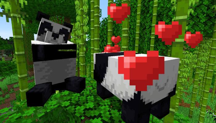 パンダを繁殖