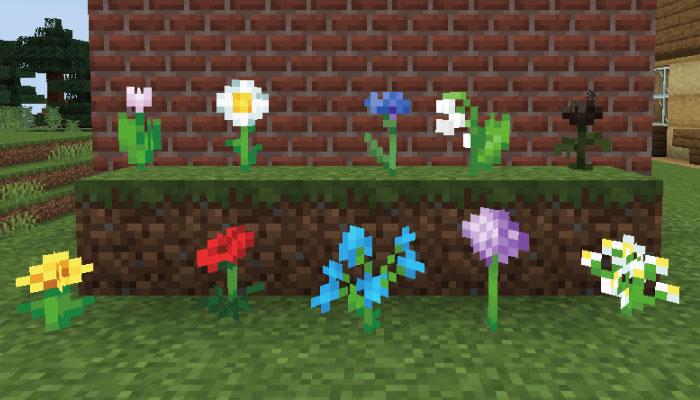 お花10種