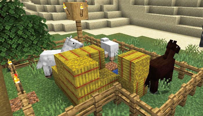 新しい村で飼われる動物