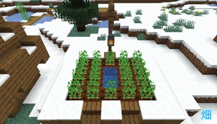 雪原の村の畑