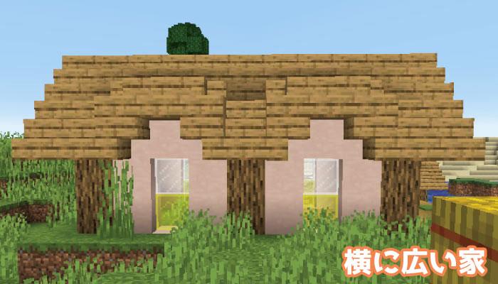 新しい村の横に広い家