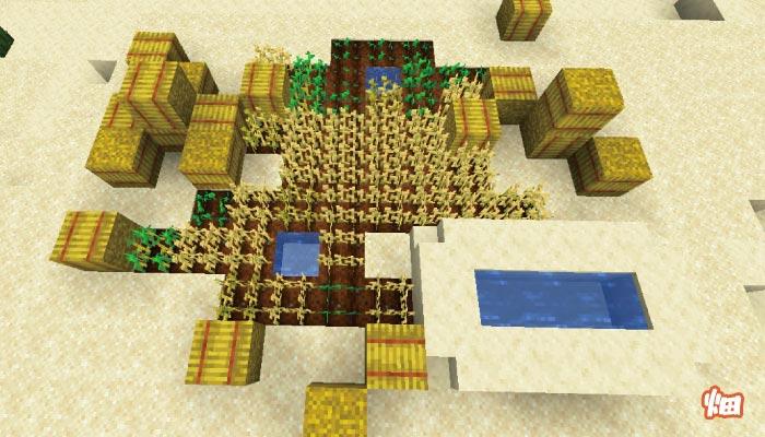 砂漠の村の大きな畑
