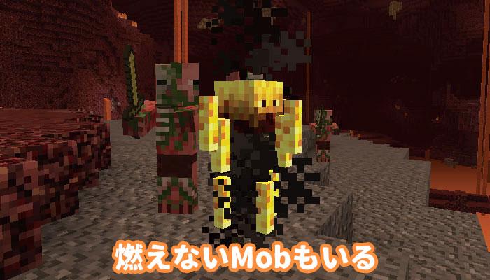 フレイムで燃えないMob