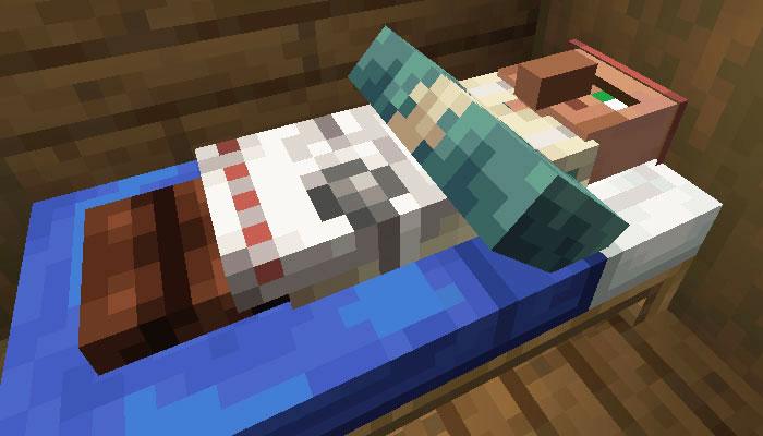 村人の睡眠