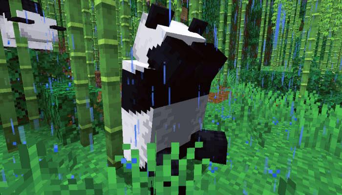 雷に怖がるパンダ
