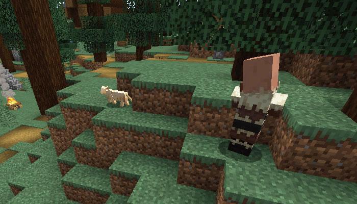 ネコを見る村人