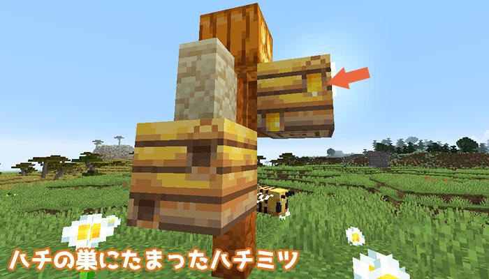 ハチの巣にたまったハチミツ