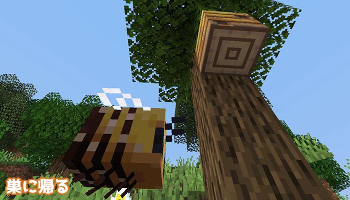 ミツバチの帰巣
