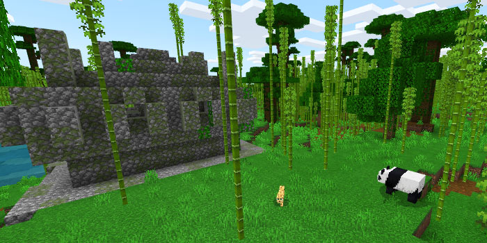 ジャングル寺院とパンダ
