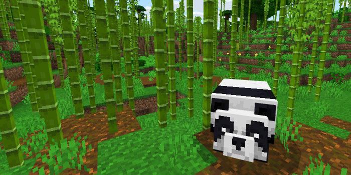 パンダと竹林バイオーム