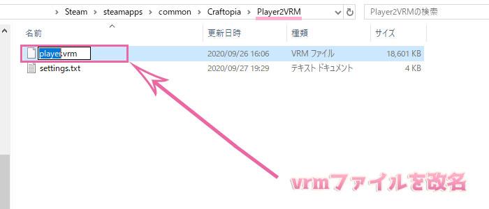 Player2VRMの導入