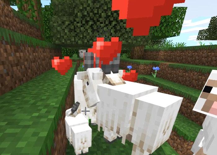 ヤギを繁殖させる
