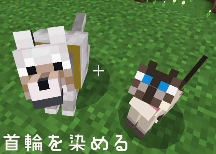 ネコとオオカミの首輪を染める