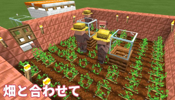 畑と農民と繁殖の様子