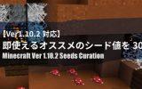 【Ver1.10.2対応】即使えるオススメのシード値を30個まとめ